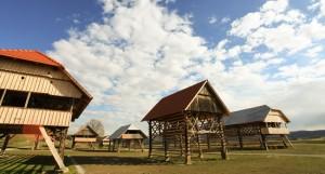 Muzej kozolcev